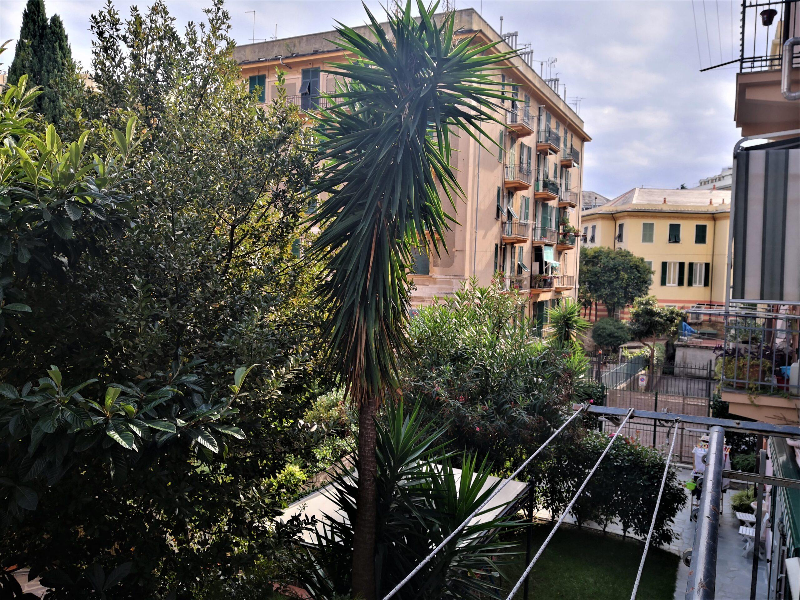ALBARO – Affitto Via Montezovetto